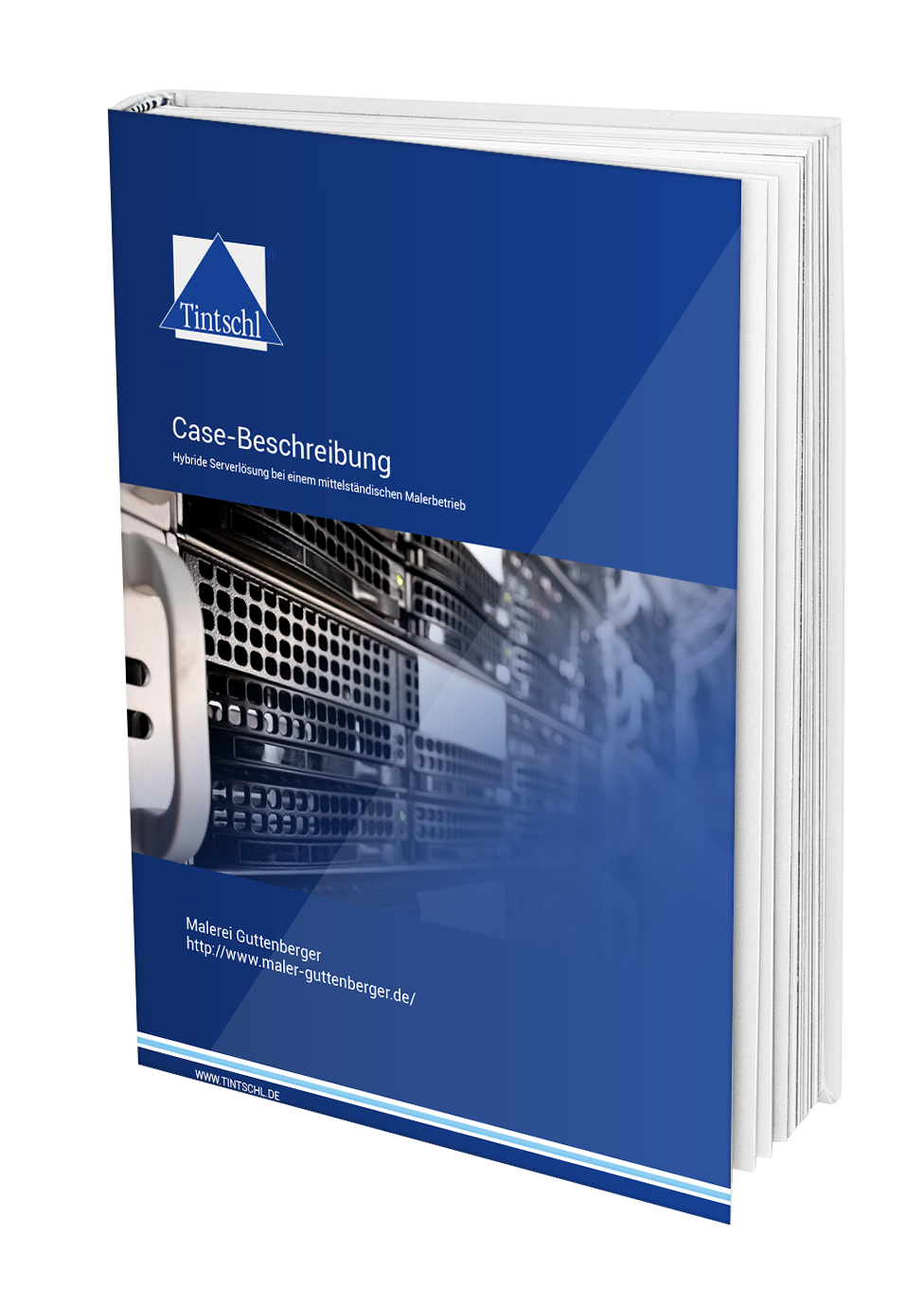 Hybride Serverlösungen Case Study