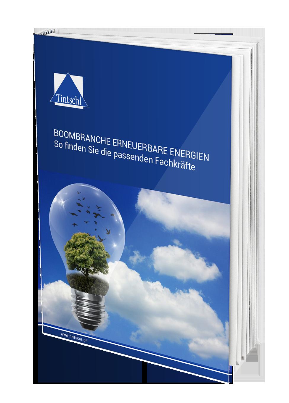 Boombranche Erneuerbare Energien